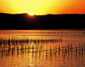 七尾湾の朝焼けとカキ棚