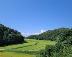 七尾市の豊かな田園風景
